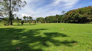 Terreno En Ventaen Guapiles, Pococi, Costa Rica, CR RAH: 20-2119