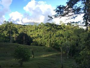 Terreno En Ventaen Limon Centro, Limon, Costa Rica, CR RAH: 20-2130