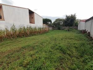 Terreno En Ventaen El Coyol, Alajuela, Costa Rica, CR RAH: 20-2189