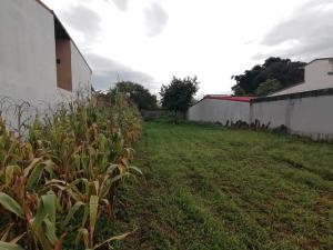 Terreno En Ventaen El Coyol, Alajuela, Costa Rica, CR RAH: 20-2190