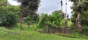 Terreno En Ventaen Las Nubes, Vazquez De Coronado, Costa Rica, CR RAH: 21-35