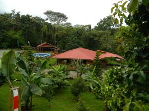 Casa En Ventaen San Isidro, Perez Zeledon, Costa Rica, CR RAH: 21-85