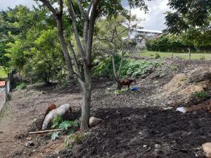 Terreno En Ventaen San Rafael Escazu, Escazu, Costa Rica, CR RAH: 21-88