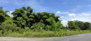 Terreno En Ventaen Rio Frio, Sarapiqui, Costa Rica, CR RAH: 21-125