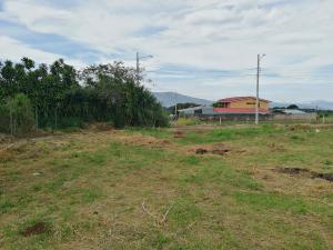 Terreno En Ventaen San Pedro, Santa Barbara, Costa Rica, CR RAH: 21-910