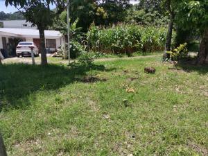 Terreno En Ventaen Piedades, Santa Ana, Costa Rica, CR RAH: 21-147