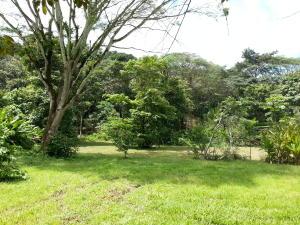 Terreno En Ventaen Tarcoles, Garabito, Costa Rica, CR RAH: 21-214