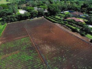 Terreno En Ventaen San Rafael De Alajuela, Alajuela, Costa Rica, CR RAH: 21-230