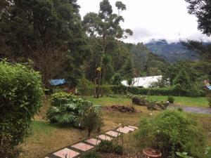 Casa En Ventaen El Jardin, Dota, Costa Rica, CR RAH: 21-329