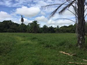 Terreno En Ventaen Abangares, Abangares, Costa Rica, CR RAH: 21-429