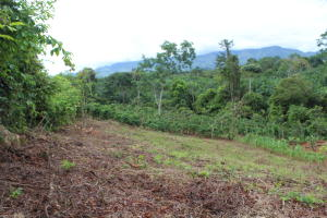 Terreno En Ventaen San Jose, Perez Zeledon, Costa Rica, CR RAH: 21-358