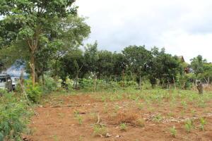 Terreno En Ventaen San Jose, Perez Zeledon, Costa Rica, CR RAH: 21-359