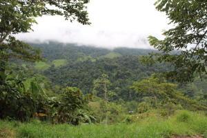 Terreno En Ventaen Baru, Perez Zeledon, Costa Rica, CR RAH: 21-366