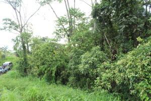 Terreno En Ventaen San Jose, Perez Zeledon, Costa Rica, CR RAH: 21-367