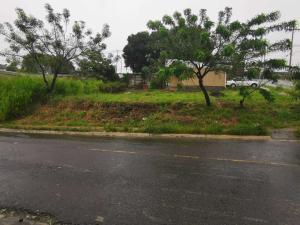 Terreno En Ventaen Tambor, Alajuela, Costa Rica, CR RAH: 21-290