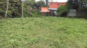 Terreno En Ventaen Ciudad Colon, Mora, Costa Rica, CR RAH: 21-470