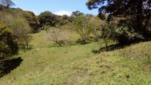 Terreno En Ventaen Puntarenas, Abangares, Costa Rica, CR RAH: 21-486