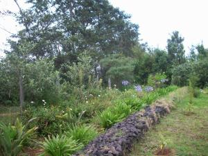 Terreno En Ventaen El Jardin, Dota, Costa Rica, CR RAH: 21-498