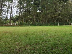 Terreno En Ventaen El Jardin, Dota, Costa Rica, CR RAH: 21-610