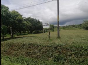Terreno En Ventaen Golfito, Golfito, Costa Rica, CR RAH: 21-629