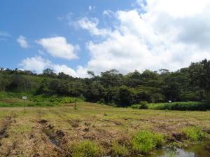 Terreno En Ventaen Jaco, Puntarenas, Costa Rica, CR RAH: 21-635