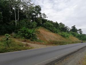 Terreno En Ventaen Limon Centro, Matina, Costa Rica, CR RAH: 21-661