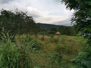 Terreno En Ventaen Santa Rosa, Turrialba, Costa Rica, CR RAH: 21-688