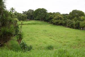 Terreno En Ventaen Alajuela, Poas, Costa Rica, CR RAH: 21-715