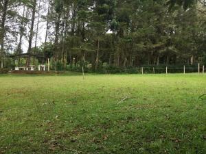 Terreno En Alquileren El Jardin, Dota, Costa Rica, CR RAH: 21-789