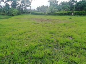 Terreno En Ventaen San Ramon, San Ramon, Costa Rica, CR RAH: 21-819