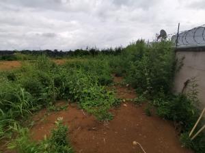 Terreno En Ventaen Tambor, Alajuela, Costa Rica, CR RAH: 21-870
