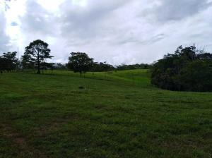 Terreno En Ventaen Upala, San Carlos, Costa Rica, CR RAH: 21-936
