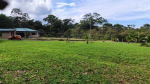 Terreno En Ventaen Jimenez, Pococi, Costa Rica, CR RAH: 21-965