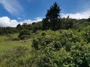 Terreno En Ventaen Concepcion, San Rafael, Costa Rica, CR RAH: 21-935