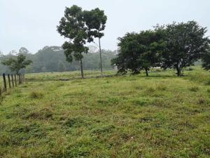 Terreno En Ventaen Guapiles, Pococi, Costa Rica, CR RAH: 21-1048