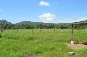 Terreno En Ventaen Santa Barbara, Santa Cruz, Costa Rica, CR RAH: 21-1156