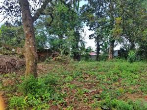 Terreno En Ventaen Guapiles, Pococi, Costa Rica, CR RAH: 21-1236
