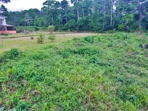Terreno En Ventaen Guapiles, Pococi, Costa Rica, CR RAH: 21-1277