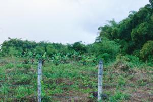 Terreno En Ventaen San Joaquin De Flores De Heredia, Sarapiqui, Costa Rica, CR RAH: 21-1279