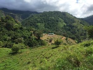 Terreno En Ventaen Bahia Ballena, Osa, Costa Rica, CR RAH: 21-1213