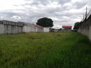 Terreno En Ventaen El Coyol, Alajuela, Costa Rica, CR RAH: 21-1384