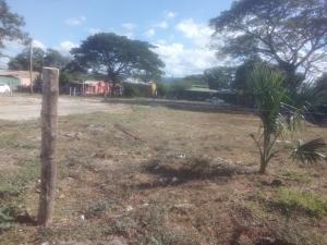 Terreno En Alquileren Chumico, Santa Cruz, Costa Rica, CR RAH: 21-1416