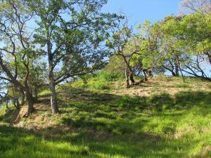 Terreno En Ventaen Altos Paloma, Santa Ana, Costa Rica, CR RAH: 21-1480