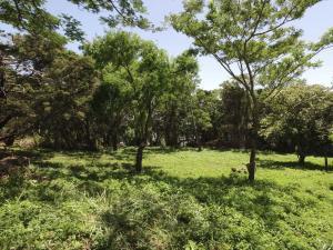Terreno En Ventaen Piedades, Santa Ana, Costa Rica, CR RAH: 21-1532