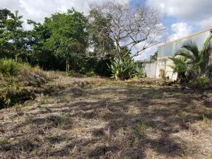 Terreno En Ventaen Guapiles, Pococi, Costa Rica, CR RAH: 21-1536