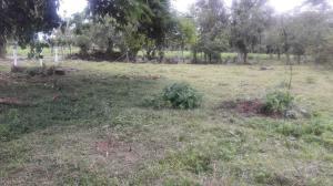 Terreno En Ventaen Laureles, Sarapiqui, Costa Rica, CR RAH: 21-1665