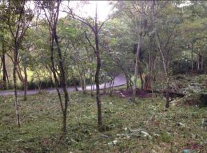 Terreno En Ventaen Bello Horizonte, Escazu, Costa Rica, CR RAH: 21-1702