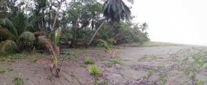 Terreno En Ventaen Limon Centro, Limon, Costa Rica, CR RAH: 21-1694