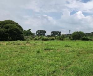Terreno En Ventaen San Pablo, San Pablo, Costa Rica, CR RAH: 21-1753