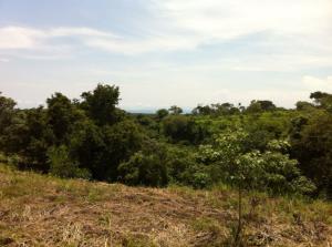 Terreno En Ventaen Tarcoles, Garabito, Costa Rica, CR RAH: 21-1791